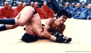 Bruce lee arm bar