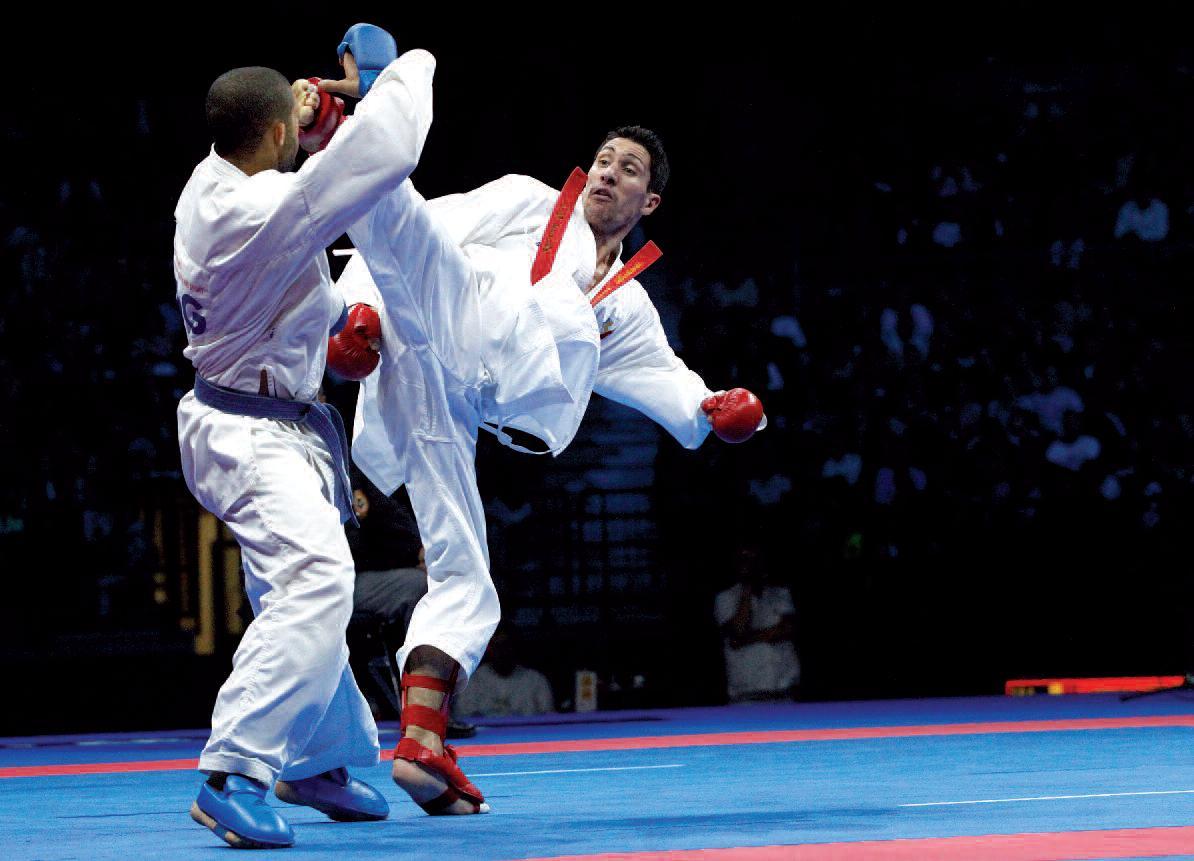 AWMA Blog | karate fig...