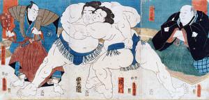 sumo 7