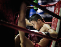 Blood, sweat and tears: Muay Thai child fighters