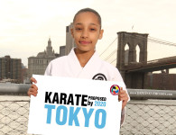 Karate Olympics (1)
