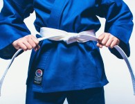 ProForce Karate Belt
