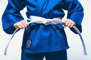 ProForce Karate Belt