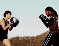 sparring equipment