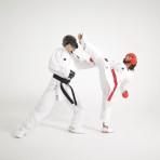 martial arts supplies