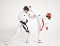 karate sparring gear wholesale